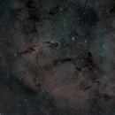 IC1396 la trompe de l'éléphant,                                Pascal Bousquet