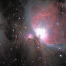 M42,                                Topographic