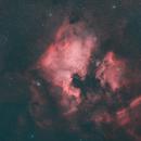 The North America Nebula and the Pelican Nebula in the constellation Cygnus,                                AstroDinsk
