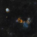 Jelly Fish Nebula & Monkey head Nebula,                                Prabhu S Kutti