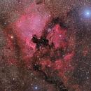 The North America and Pelican Nebulas,                                Arun H.