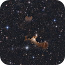 vdB 141 (Ghost Nebula),                                Giorgio Ferrari