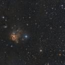 NGC 1579 - Northern Trifid Nebula,                                Michael S.