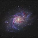 M33 - The Triangulum Galaxy,                                Francesco Battistella