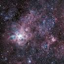 Tarantula nebula NGC  2070,                                jackstar