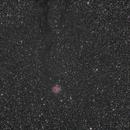 IC5146,                                Wilson Yam