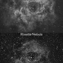 2237-2238 (Rosette Nebula) & 2244 OC (comparison filter Ha & CLS),                                micotino