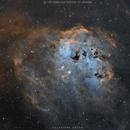 IC 410 in Hubble palette,                                Salvatore Cozza