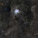 NGC7023 - Iris Nebula - widefield,                                Dagolaf