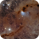 Dusty Arms of the Taurus Molecular Cloud,                                Jim Lindelien