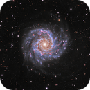 M74--A Colorful Phantom,                                John Hayes