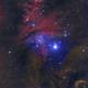 NGC 2264 The Fox Fur\Christmas Tree,                                Greg Ray