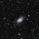 NGC2403,                                Daniel Fournier