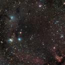 Barnard 38,                                PJ Mahany