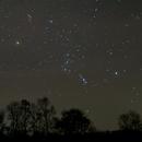 Orion und Stier mit Handy,                                Gottfried Meissner
