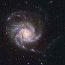 M101 close-up,                                Nick Smith