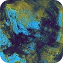 Pelican Nebula - SHO version,                                Mike Brady