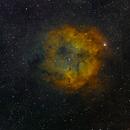 IC1396,                                Gerhard Henning