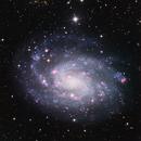 NGC 300,                                Debra Ceravolo