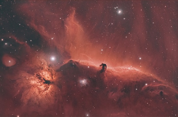 The Horsehead nebula and friends,                                Roy Hagen