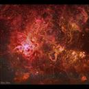 Tarantula Nebula HaSiiOiii (HSO),                                Göran Nilsson