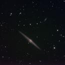 NGC4565  the Needle,                                Glen Wurden