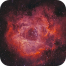 NGC2237 Rosette Nebula Modified BiColor Processing !!,                                Young Joon Byun