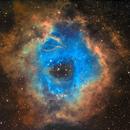Rosette Nebula in SHO,                                AstroForum