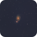 M51 The Whirlpool Galaxy (Disappointed),                                Tam Rich