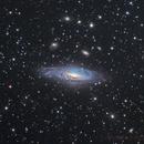 NGC 7331,                                Astrowood