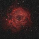 Rosette Nebula,                                Graham Roberts