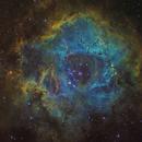 The Rosette Nebula (Caldwell 49) SHO,                                Oliver Czernetz