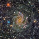 Fireworks Galaxy (NGC 6946),                                Miles Zhou