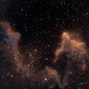 IC63 Gamma Cassiopeia Nebula,                                Jeff Dorman