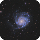 M101 - Pinwheelgalaxy,                                Andreas Reifke
