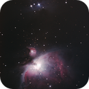 M42 - Orion Nebula,                                Malte Koch