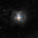 NGC7023,                                Massimo Ermanni