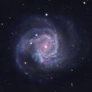 2020jfo in Messier 61,                                Ian Gorin