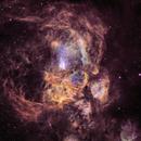 Pismis 24 @NGC6357 (Inside the Lobster Nebula),                                Ruben Barbosa