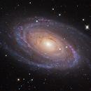 M81,                                Andy Ermolli
