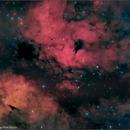 IC 1318 - Gamma Cygni Nebulosity (4 panel mosaic),                                Randal Healey