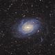 NGC 6744 - Spiral Galaxy in Pavo (DSS v1),                                Martin Junius
