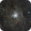 Iris Nebula - NGC 7023,                                Crazy Owl Photography