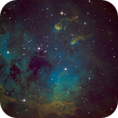 Tadpole-Emission-Nebula,                                Ron Machisen