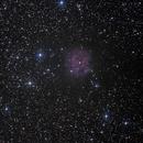 IC 5246 - Kokonnebel,                                Sammler