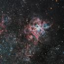 Tarantula Nebula from Goldfield Observatory,                                Mauricio Christiano de Souza