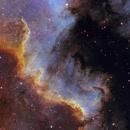 Great Wall of Cygnus,                                Nikita Misiura