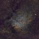 Sh 2-86 / NGC 6820 and NGC 6823,                                Phillip