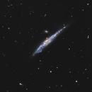 Whale Galaxy NGC4631,                                jgmess