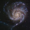 M101 The Pinwheel Galaxy,                                Shannon Calvert